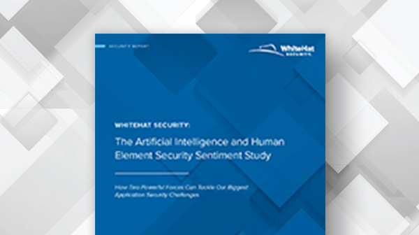 The AI and Human Element Security Sentiment Study